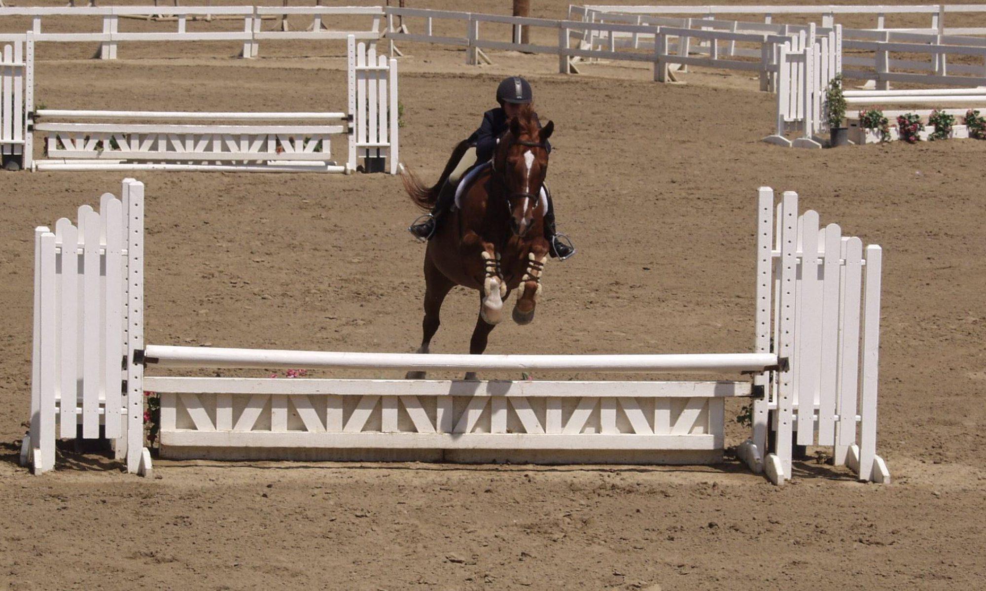 HorseTrak